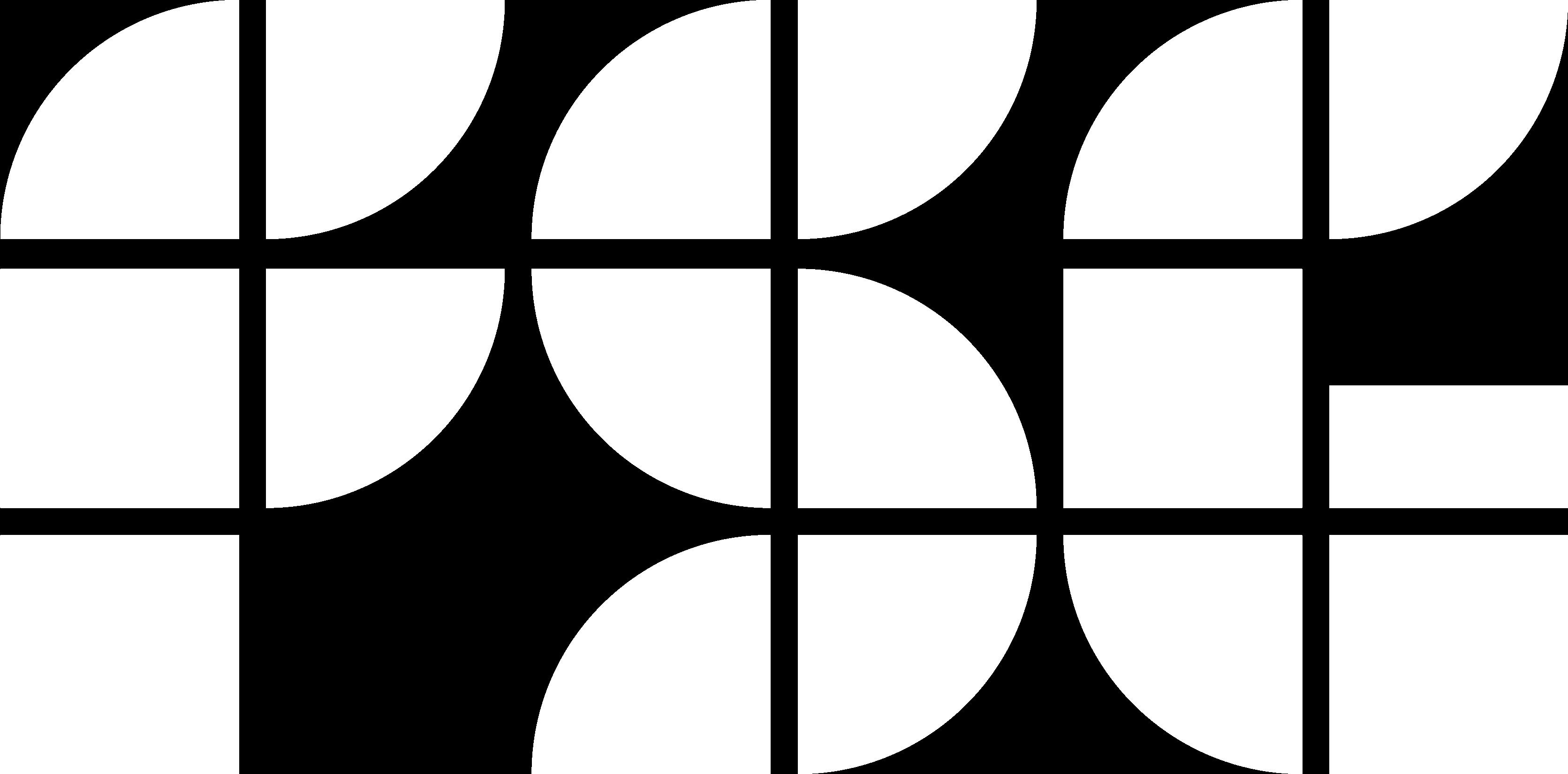 logo_FSG_X_W