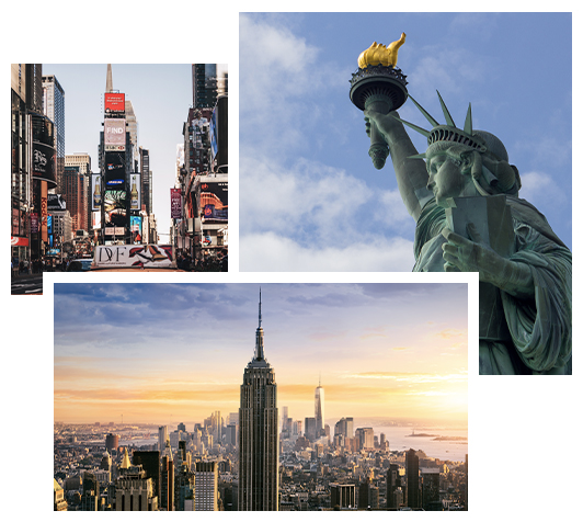 FSG-NYC-collage (1)
