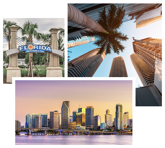 FSG- Southern Florida-collage (1)